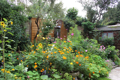 Maurice's Garden
