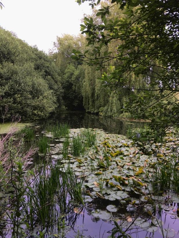 Grimston Lower Pond