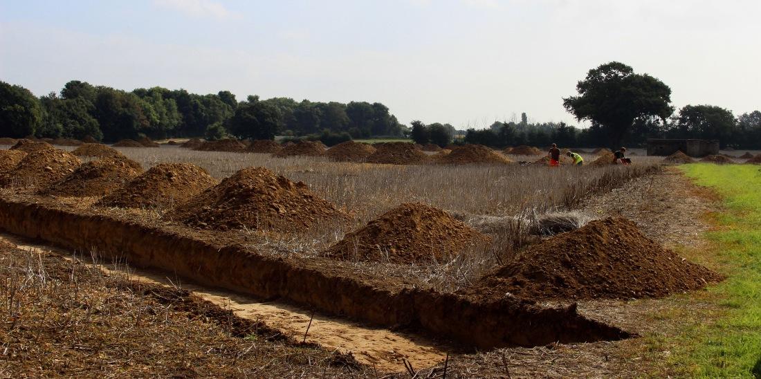 14.09.2018 chicken farm site dig